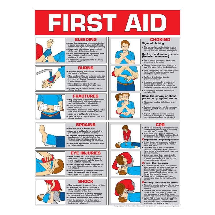 First Aid Chart Color Laminated