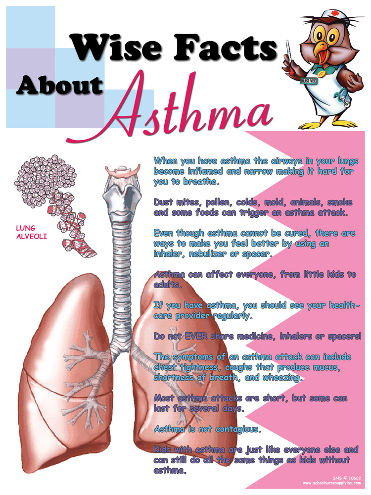 Wise Facts About Asthma Poster
