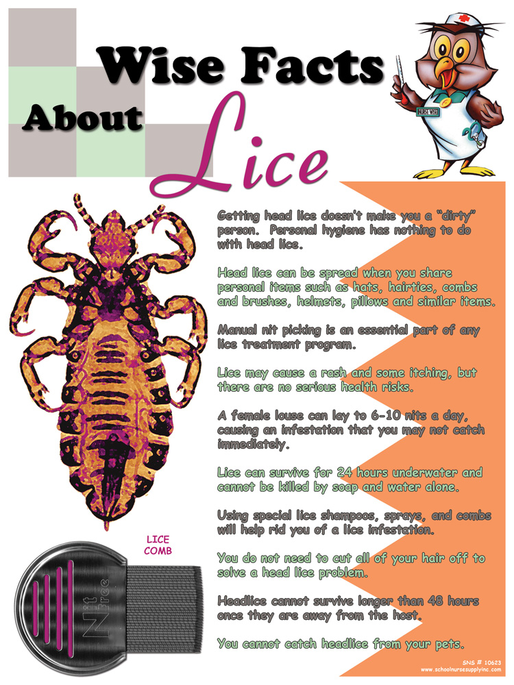 SNS Wise Facts About Lice Poster