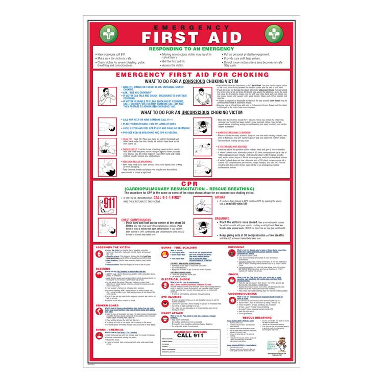 image regarding Printable First Aid Guide named Crisis Very first Assistance Poster