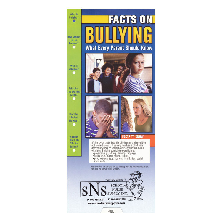 Slide Guide Cards - Bullying/Cyber Bullying