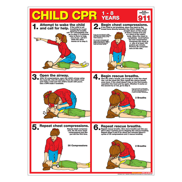 Cpr Chart Child Laminated