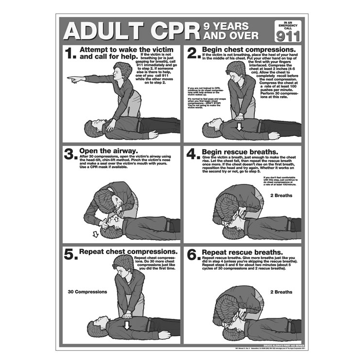 CPR Chart:  Adult (50/Pad)