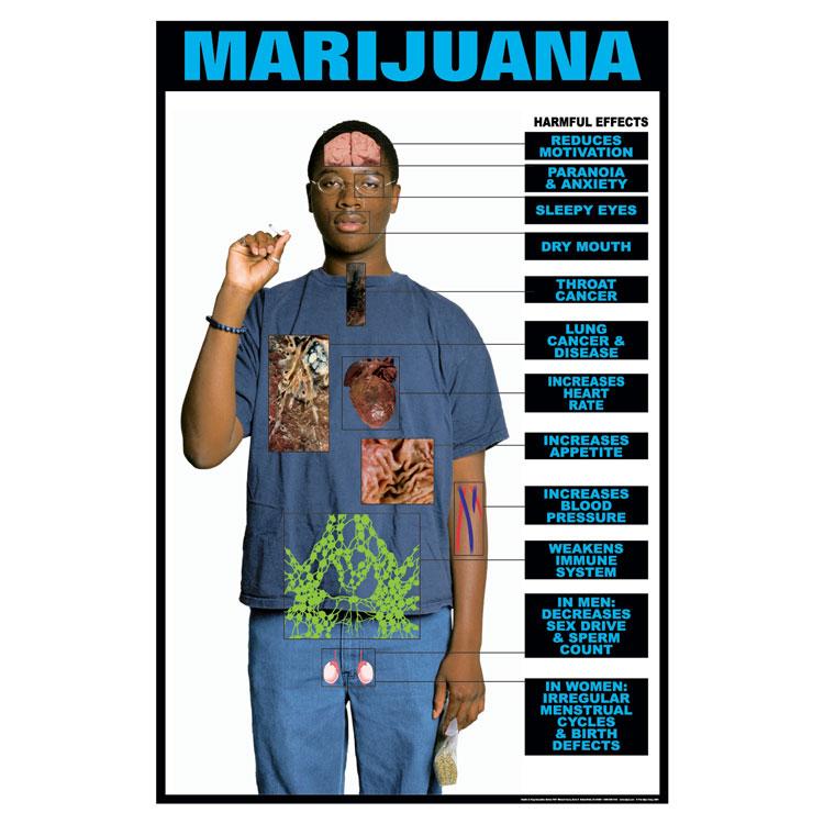Drug Education Series Of Posters Marijuana