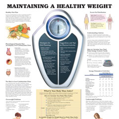 Diet, Nutrition & Fitness