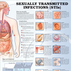 Conditions of the Human Body