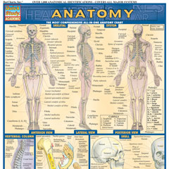 Medical & Health Guides