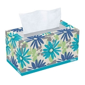 Kleenex Everyday Facial Tissues (190-ct Box)
