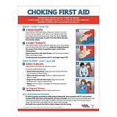 Choking First Aid Poster (17
