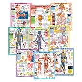 Kate Sweeney Elementary Health Charts - Complete Set of 9