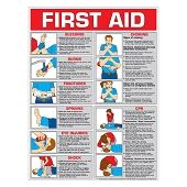 First Aid Chart:  Color (Laminated)