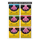 Drug Education Posters - How Drugs Create Euphoria