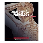 Anatomy & Pathology: World's Best Anatomical Charts