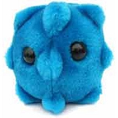 GIANTmicrobes - Common Cold Microbe