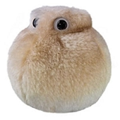 GIANTmicrobes - Fat Cell Microbe