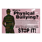 What Is Physical Bullying? Poster