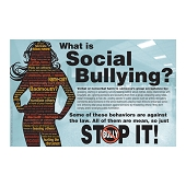 What Is Social Bullying? Poster