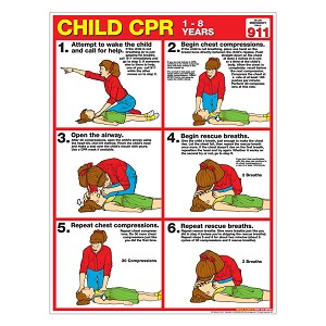 CPR Chart:  Child (Laminated)