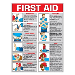 First Aid Chart:  Color (Paper)