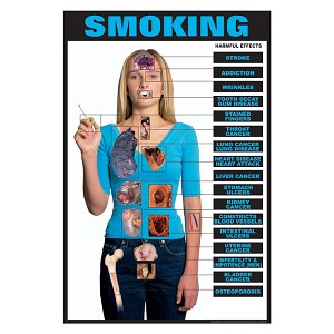 Drug Education Series of Posters:  Smoking